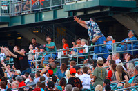 fans catching a fly ball